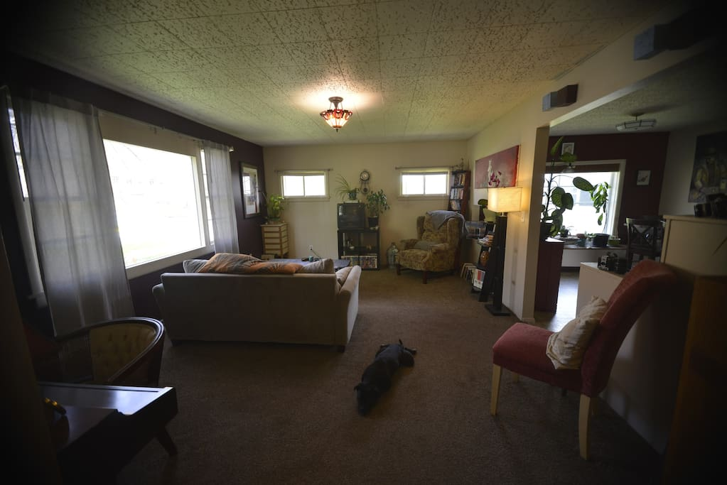 The Living Room through a wide angle lens (I'm a photographer) and a Pickle dog on the ground :)