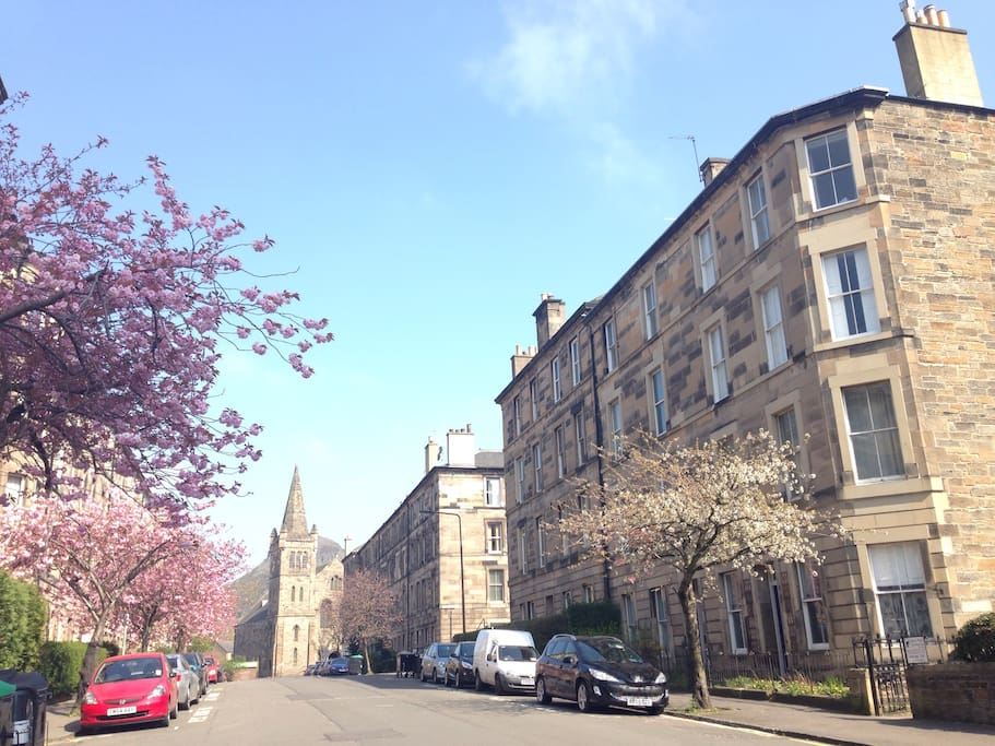 Our tree lined street is in fashionable Newington. You can see Arthur's Seat in the background to this photo.