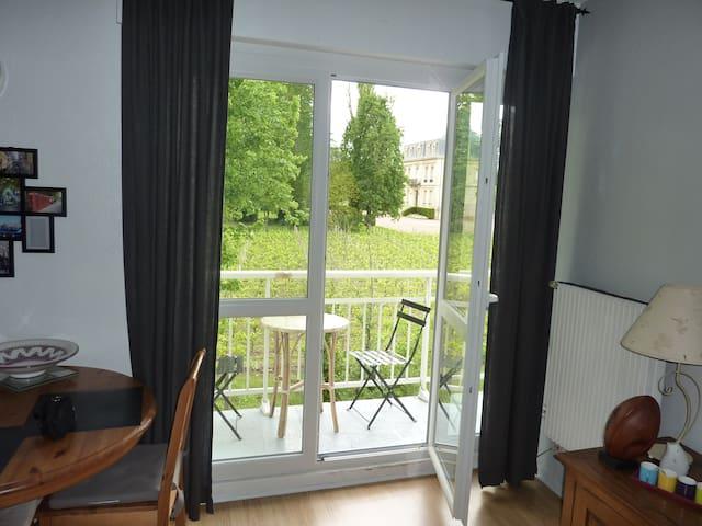 T2 lumineux, vue sur les vignes - Gradignan - Apartament