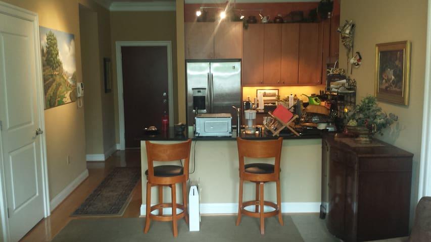 Logan Circle Apartment - Washington - Flat