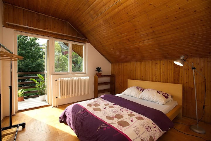 Room+Wifi+Balcony+GardenNearCenter2 - Budapest - House