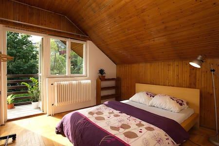 Room+Wifi+Balcony+GardenNearCenter2 - Budapest - Ház