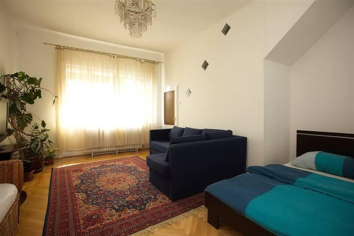 Huge Room+Wi-Fi+Garden near Center! - Budapest - House