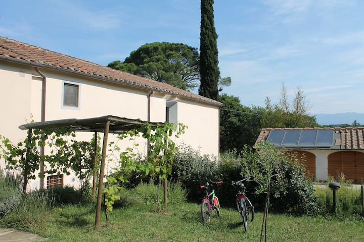Appartamento in campagna in toscana - Pogi - Apartment