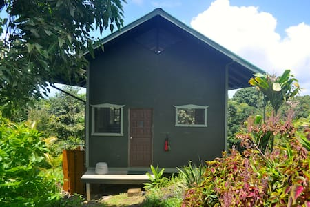 Jungle Cottage on Sustainable Farm - Maui