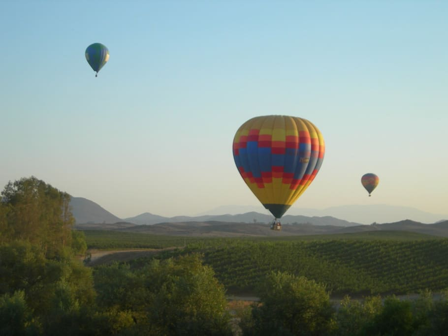 See hot air ballons in the backyard