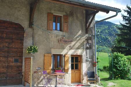 Duplex  Annemasse - Genève - Annecy - Beaumont