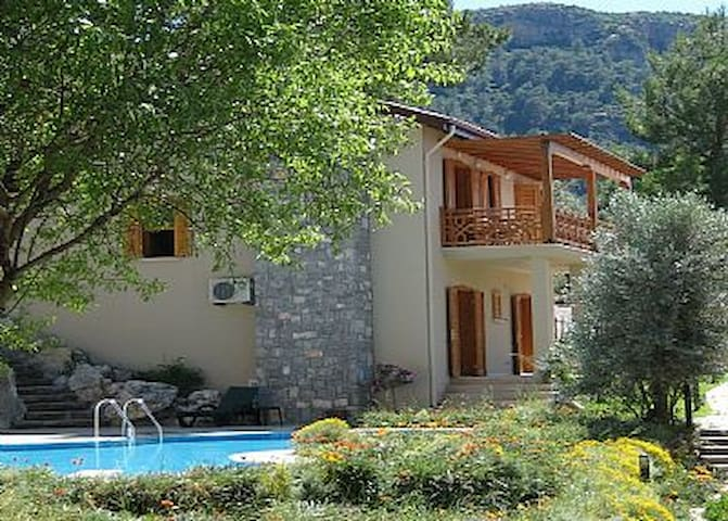 Beautiful spacious villa with pool - Yeşilüzümlü - House