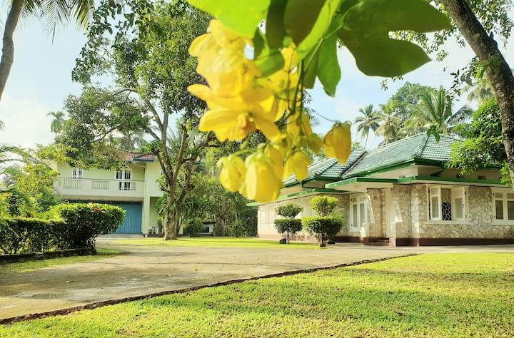 Mohotti House ~ Galle Unawatuna ~