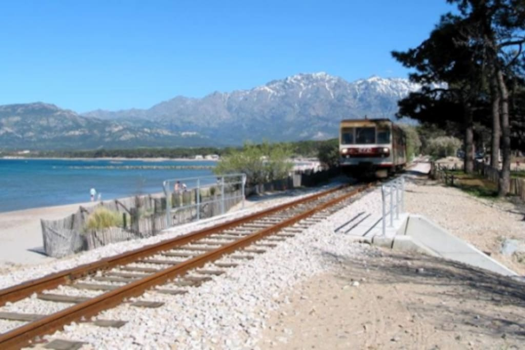 Il trenino a 40 mt. dal bilocale, vi porterà su tutte le più belle spiagge della Baia!