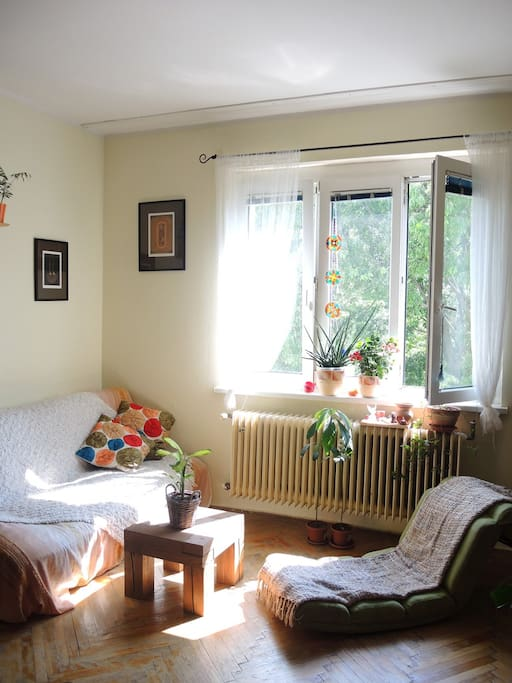 Living room/bedroom is spacious and facing park as well, thus providing lot of privacy and good feeling.