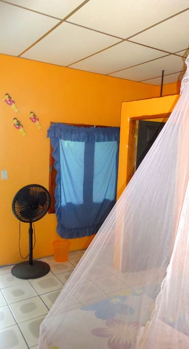 Fan and mosquito net