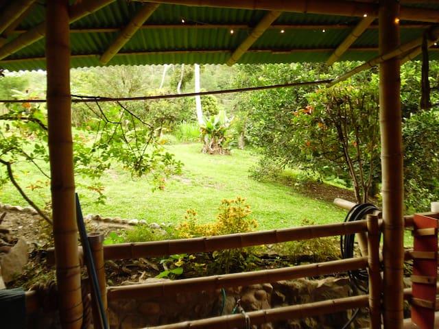 Chirripo Mountain Yurt