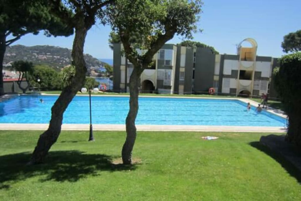 Gran piscina comunitaria.
