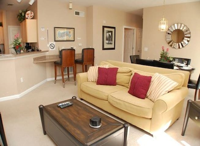 Beautiful resort apartment - Disney