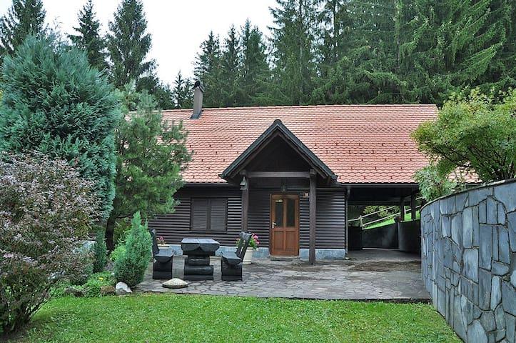 Rogla Lodge - front patio