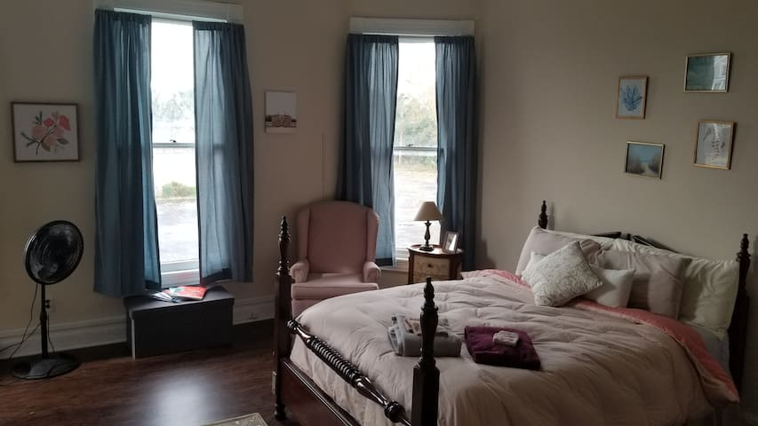 Lovely Room in Historic Home Downtown!