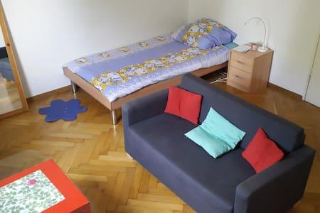Gemütliches Zimmer/Single room - Ostfildern - Wohnung