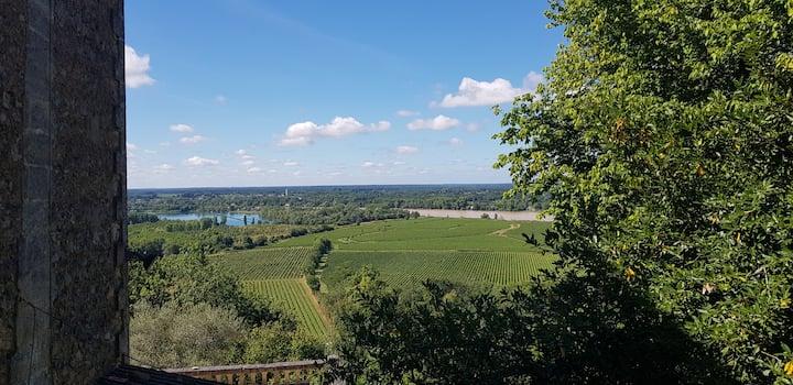 Calme avec jolie vue sur la Garonne