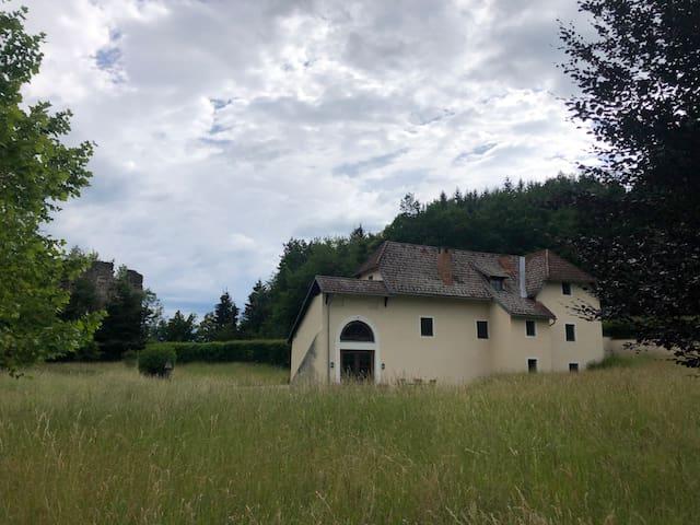Alte Schmiede in idyllischer Einzellage