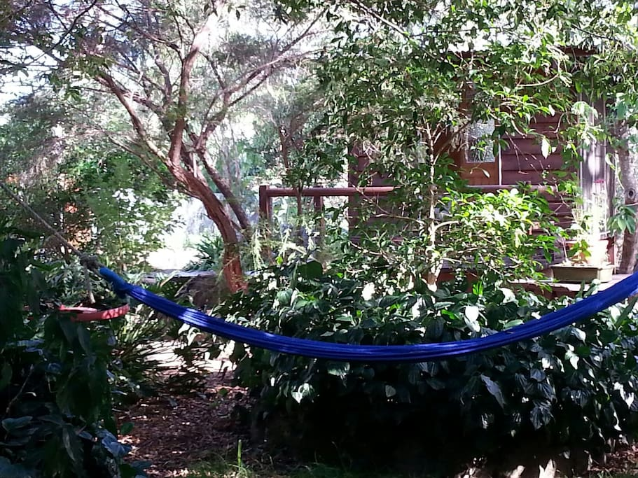 Hammock for some quiet time