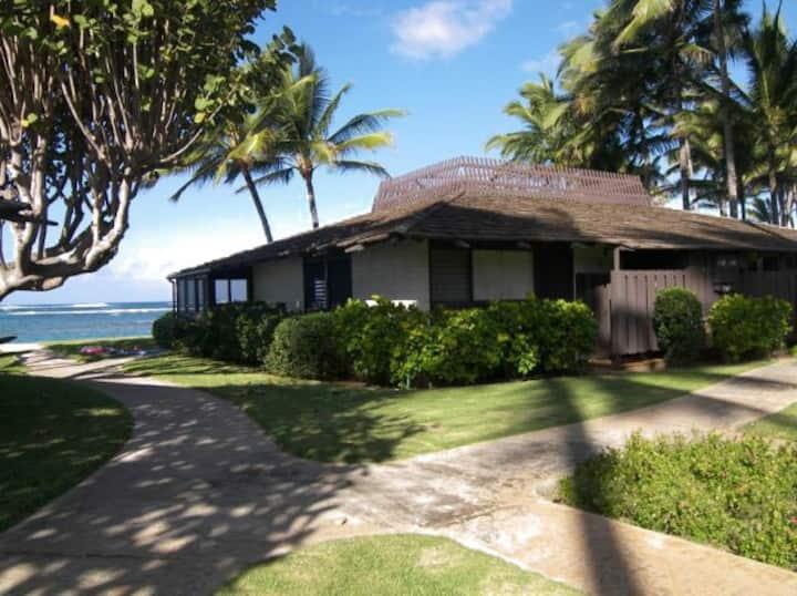 True Jewel - Oahu North Shore
