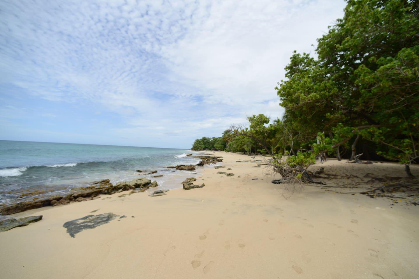 Sun, Sea and aquatic Activities