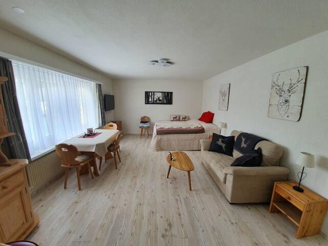 Zentrale 1-Zi-Wohnung in Lenzerheide (Allod 301)