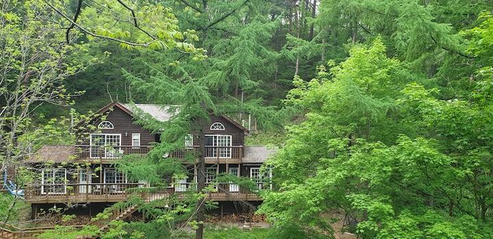 🎄🌲노르웨이숲 힐링숲 🅰️ 벽난로 불멍🔥~  바베큐~숲속 힐링 ~별 ~계곡물소리~