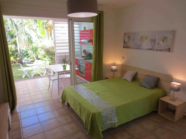 Very nice apartment 100 m from the beach - La Saline-Les-Bains - Huoneisto