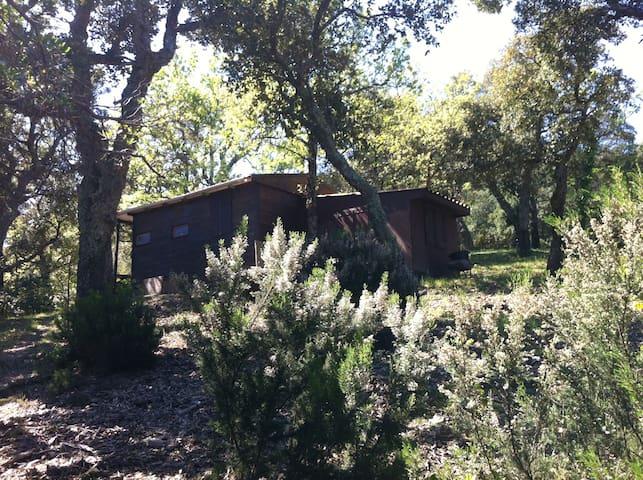 Chalet en bois dans la forêt - La Garde-Freinet - Bungalou