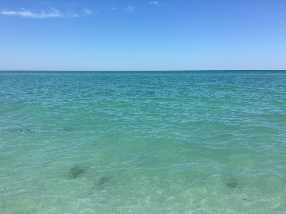 Clear water often