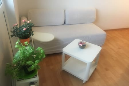 Duplex apartment - south of Dresden with balcony