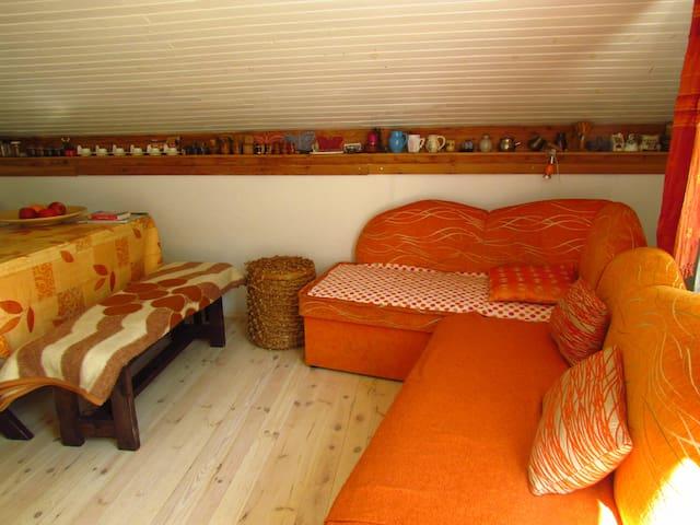 pokój z aneksem kuchennym i wyjściem na podwórze