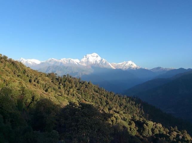 View of Daulagiri