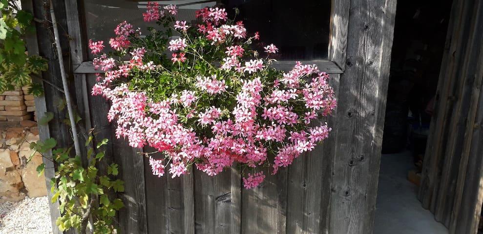 Grange fleurie