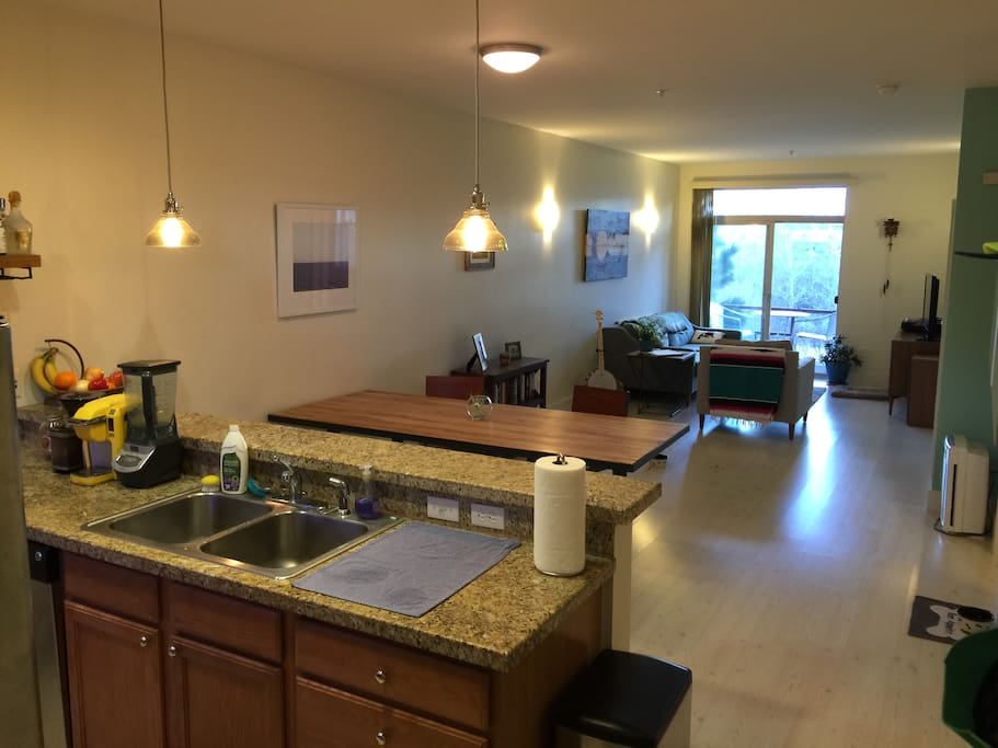 Kitchen, dining table, and living room