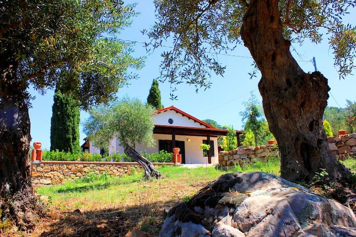 Villa dei Pavoni - Cefalù - Casa de camp