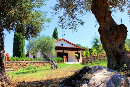 Villa dei Pavoni - Cefalù - Villa