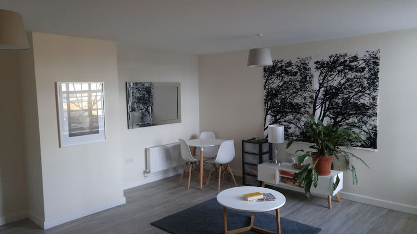 Spacious modern flat one block from Overground
