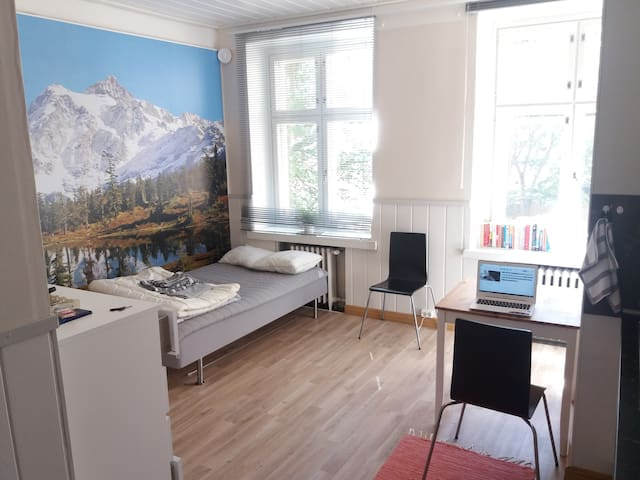 Bright 1 room flat in the heart of Helsinki - Helsinki - Appartamento