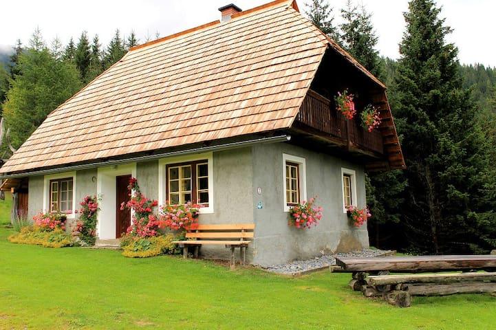 Droneberger-Hütte - Sankt Veit an der Glan - Chalé