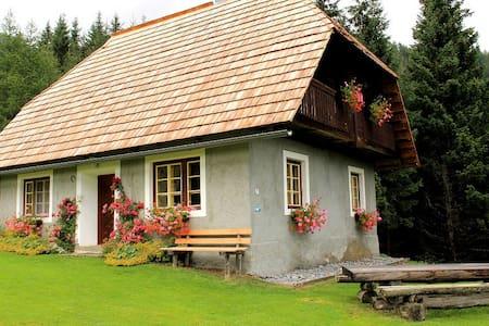 Droneberger-Hütte - Sankt Veit an der Glan - Almhütte