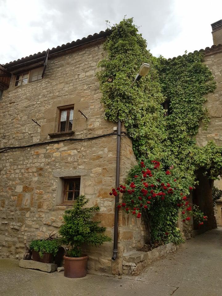 Una casa medieval restaurada amb vistes als camps