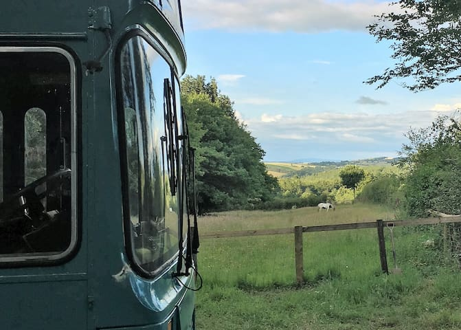 The Big Blue Bus,fully equipped privacy Presteigne