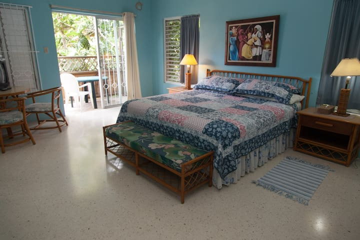The Other Side Villa Room #1...king size bed, fans, AC, walk in closet. great room for long stays. deck off of bedroom/pick breadfruit from your deck