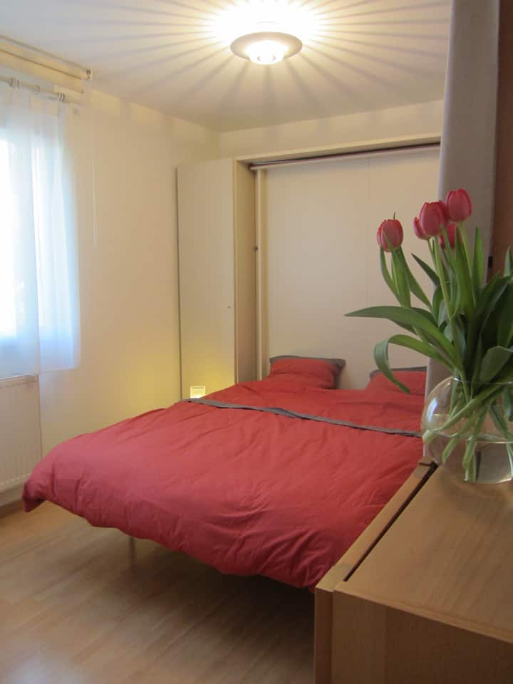 Room 2 persons near Palexpo to airport