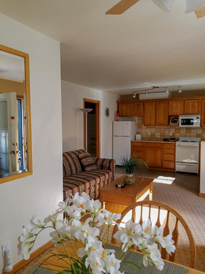 Cozy 1 Bedroom Condo in the Center of Ouray