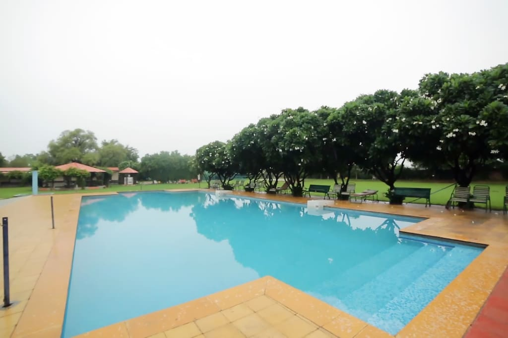 Resort Garden Swimming Pool