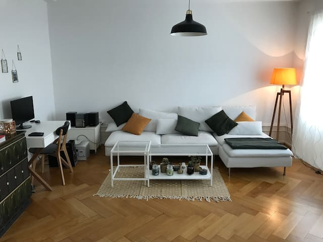 Art Basel: Home away from home - Basel - Apartment